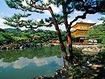 Япония заплатит путешественникам за посещение страны