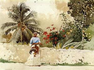 Недвижимость Багамских островов - Рай для миллионеров? - Можно найти варианты по карману