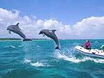 Супружеская пара Lleyton и Bec Hewitt купила недвижимость на Багамах