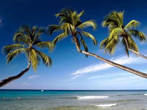 Рынок недвижимости Барбадоса на подъеме, несмотря на низкий сезон